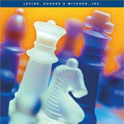 Denver Levins: Denver Digital Marketing Agency